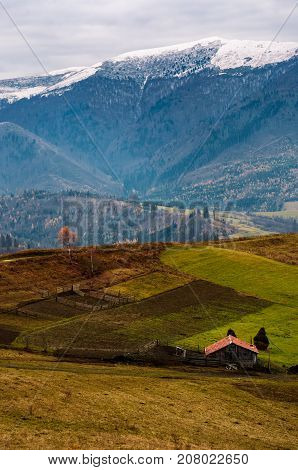 Barn And Lonely Tree On Hillside In High Mountains