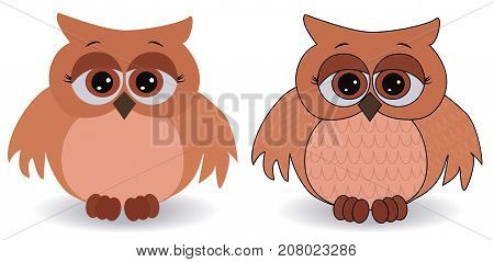 Two Sad Pink Owls With Surprised Eyes And Splayed Wings, With A Pattern On The Sternum And Wings