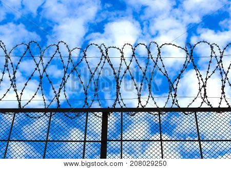 Barbed wire against the sky background. Concept of prison and unfreedom