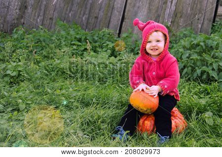 A Small Serious Child In A Purple Dwarf Suit Sits On The Big Pumpkin Smile And Looks In Front. The S