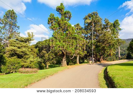 Hakgala Botanical Garden, Nuwara Eliya