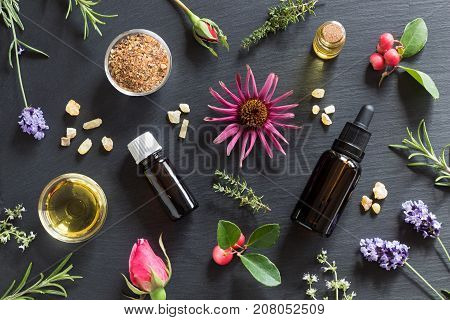 Selection Of Essential Oils And Herbs On A Dark Background