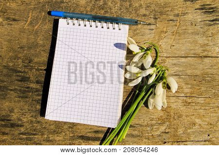 Bouquet Of White Snowdrops With Blank Notepad And Pen On Wooden Background