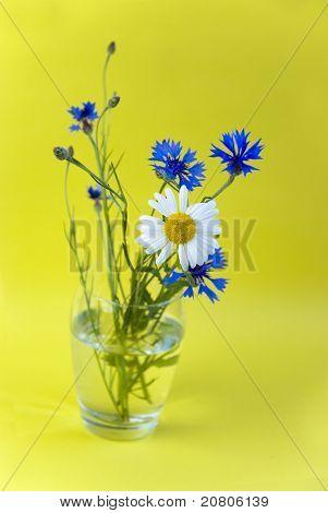 Wilde Blumen auf gelbem Grund