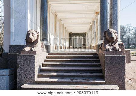 Pergola With Columns