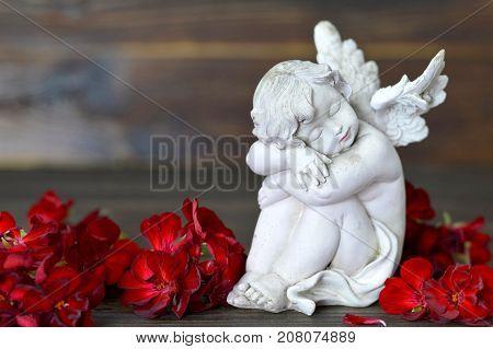 Close up of little guardian angel sleeping