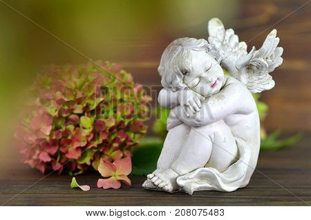 Guardian angel and flower on wooden background