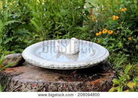 Porcelain bird sitting in the middle of a concrete bird bath in a wildflower garden.