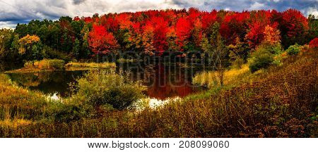 Colorful colors of Autumn in New Brunswick, Canada