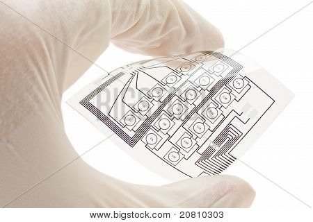 Flexible Printed Electric Circuit