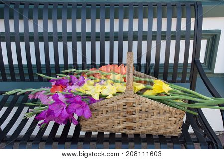 Gladiolus flowers in a wicker basket with the basket on a black metal bench. Photographed in natural light.