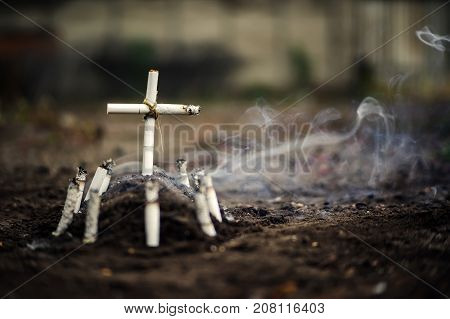 Grave Of Bad Habit