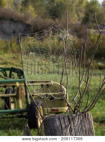 A spider web woven between branches with water drops. A piece of farm equipment is in the background. Shallow depth of field.
