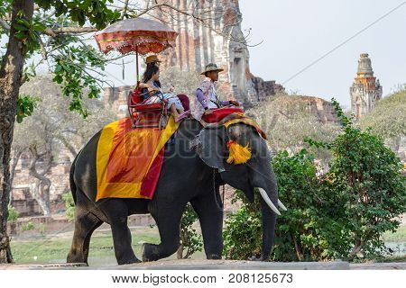Ayutthaya Thailand  April 15, 2017 : Riding an elephant The elephant is the dominant activity of the main attractions -  Ayutthaya historical park And a World Heritage Area