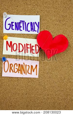 A Yellow Sticky Note Writing, Caption, Inscription Gmo Genetically Modified Organism Acronym On Colo