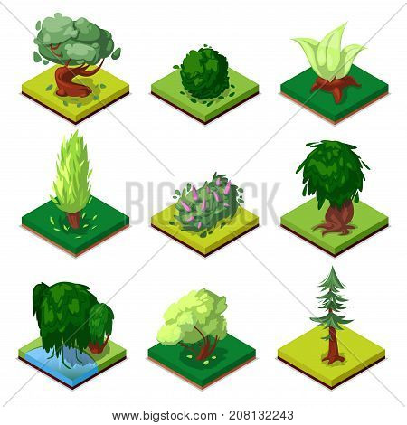 Public park decorative trees isometric 3D set. Oak, pine, fir, bush, willow, beech, poplar, green grass, vector illustrations. Nature elements collection for summer park landscape design.