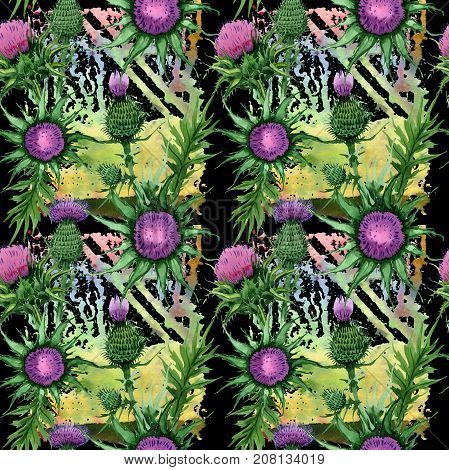 Wildflower budyak flower pattern in a watercolor style. Full name of the plant: budyak. Aquarelle wild flower for background, texture, wrapper pattern, frame or border.