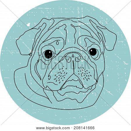 Pug dog. Portrait dogs pug. Vector illustration.