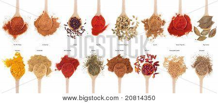gorgeous collection of 16 spices on wooden spoons (cumin coriander cloves curry chili piri piri cinnamon cardamom fenugreek garam masala oregano parsley paprika turmeric bay) isolated on white background poster