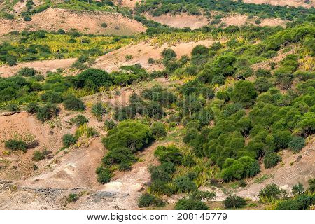 Olduvai Gorge is a cradle of mankind, Tanzania, Africa
