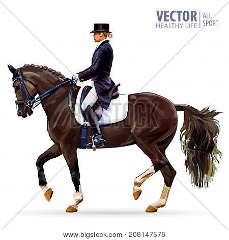 Equestrian sport. Horsewoman jockey in uniform riding horse outdoors.