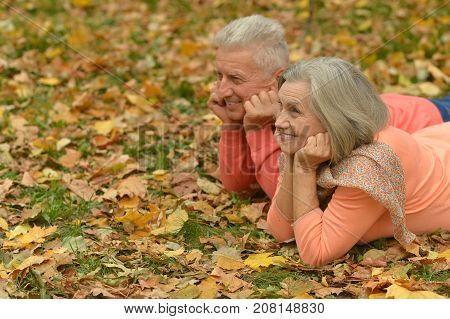 Portrait of senior couple lying in autumn park