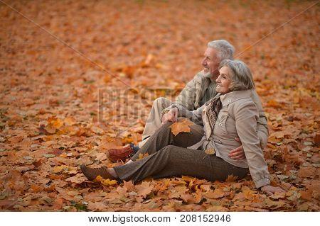 Portrait of senior couple sitting in autumn park