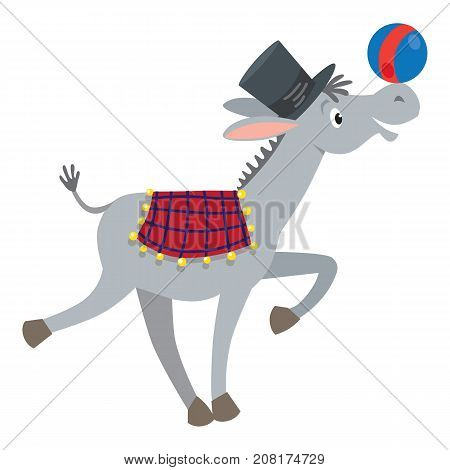 Children vector illustration of funny gray donkey in cylinder had and chekered blanket with ball