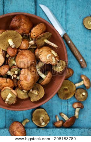 Plate with forest mushrooms on a wooden background