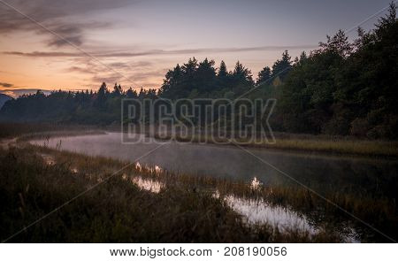 Foggy river Ribnica in the morning .