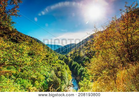 Sunny autumn day in the foothills of Adygea