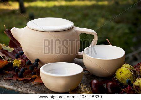 Ceramics tea set teapot Cup of white tea