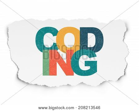 Database concept: Painted multicolor text Coding on Torn Paper background