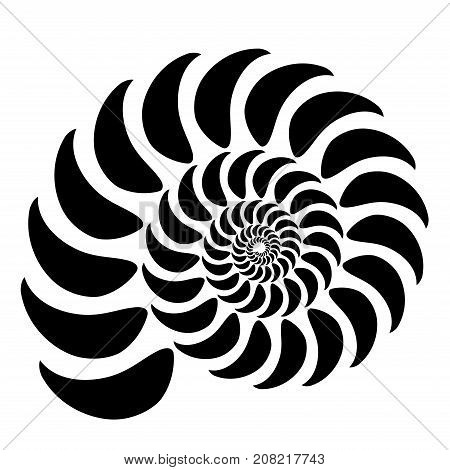 Graphic Vector Image Of A Shell Of An Ancient Malyuska. Abstract Background, Pattern. Isolated Objec