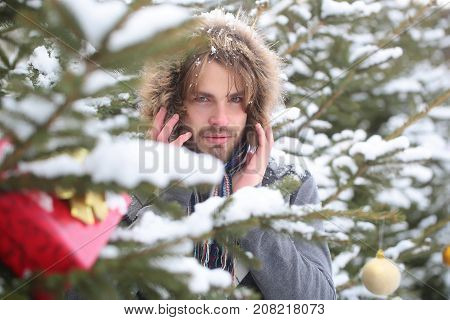 Macho With Bearded Face In Snow Forest