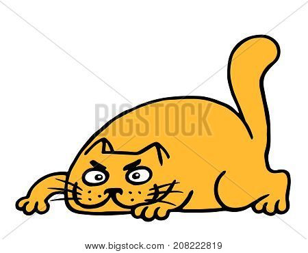 Cute cartoon orange cat preys. Vector illustration.