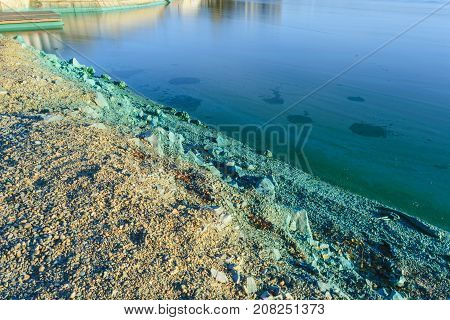 The Shore Of A Pond Infected With Cyanobacteria