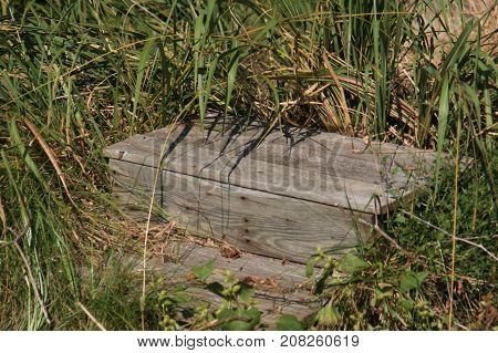 A large wooden box laying in the tall grasses