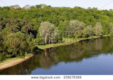 A river with dirty water flowing through a mixed forest. landscape in the spring