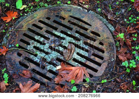 A top view image of a storm drain lid.