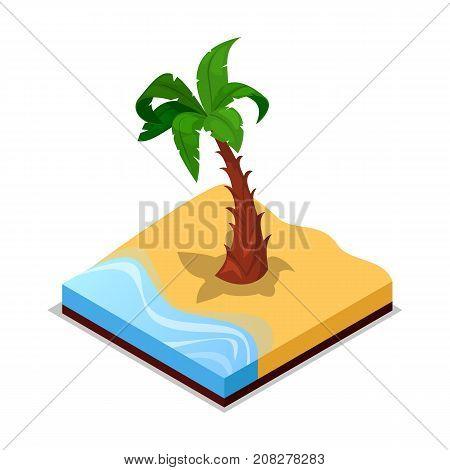 Green palm tree on beach isometric 3D icon. Public park decorative plant vector illustration. Nature map element for summer parkland landscape design.