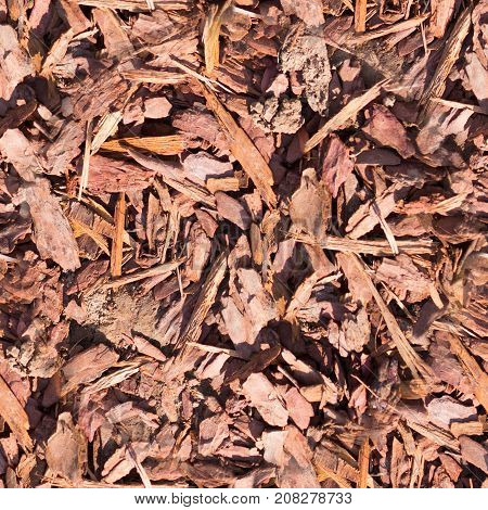 seamless wooden chips mulch on the ground texture. background.