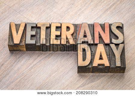 Veterans Day  - word abstract in vintage letterpress wood type blocks
