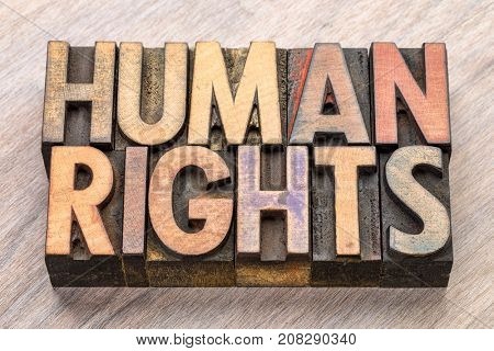 Human rights - word abstract in vintage letterpress wood type blocks