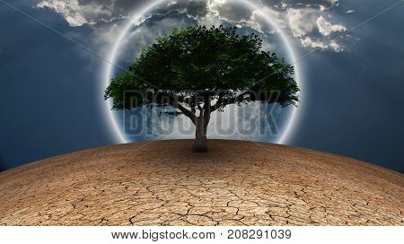 Surrealism. Green tree in arid land. Full moon in blue sky.3D rendering     Some elements courtesy of NASA