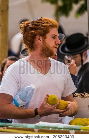JERUSALEM, ISRAEL - OKTOBER 16, 2016: Young religious man in black skullcap chooses ritual  etrog. Traditional market before the holiday of Sukkot