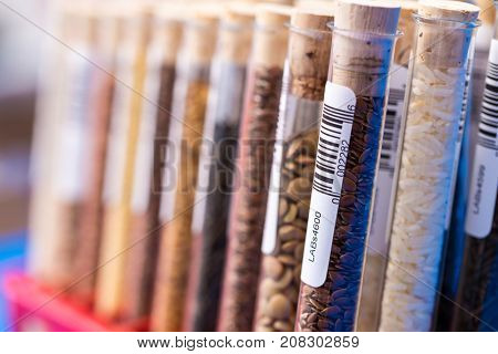 Test tubes with bar codes with seeds of selection plants