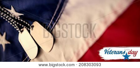 Logo for veterans day in america  against close-up of dog tag chains on flag