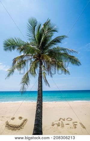 Palm tree and no wi-fi writing on the beautiful sandy beach over blue sea and sky background