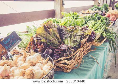 Farm fresh vegetables on display at farmers market harvest festival